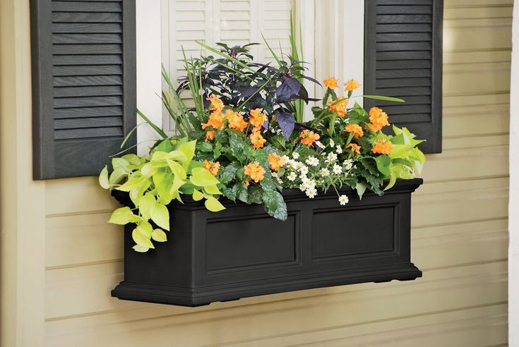 Self Watering WindowboxWindows Boxes, Outdoor, Water Windowboxes, Fairfield Windowboxes, Gardens, Black Windows, Planters Boxes, Flower Boxes, Window Boxes