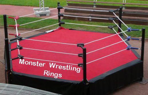 Hexagon Wrestling Rings | Getting in shape | Pinterest ...