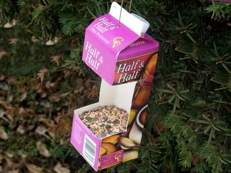 Recycled Half & Half container makes a great bird feeder
