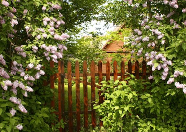Secret Garden: 17 Best Images About Country Garden Gates On Pinterest