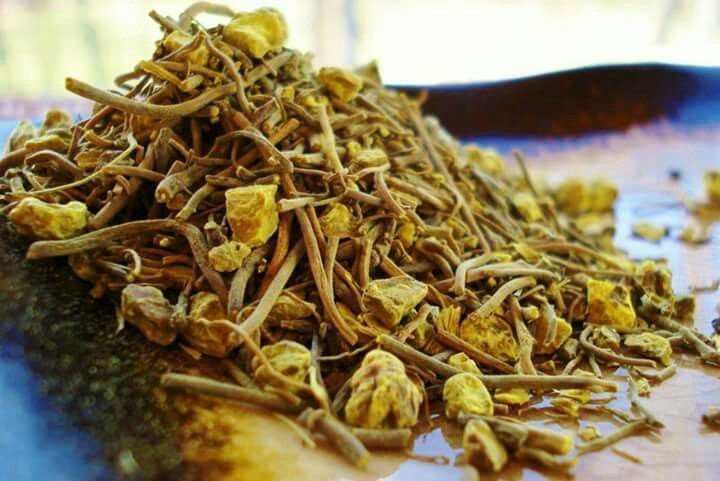 Goldenseal root is a popular herb from North America that works as a powerful herbal antibiotic and immune system enhancer. Goldenseal is a good source of vitamins A, C, E, & B-complex and minerals such as calcium, iron and manganese. It contains potent anti-bacterial, anti-microbial, anti-fungal, and anti-inflammatory properties as well as alkaloids that are known to be an effective treatment for diarrhea and stomach problems that are caused by influenza or food poisoning. It is also very…