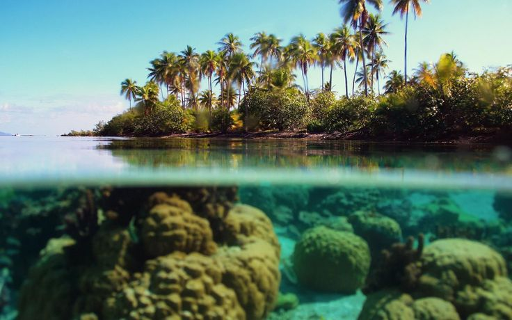 beach underwater wallpapers high quality