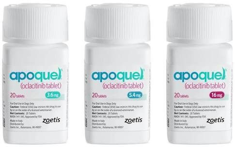 Apoquel Coupon Dog Allergies Apoquel Dog Skin Allergies