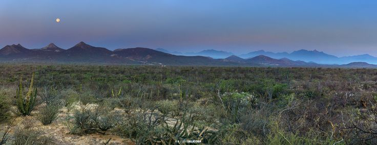 Two peaks in East Cape #josafatdelatoba #cabophotographer #loscabos  #eastcape #sanjosedelcabo #bajacaliforniasur #panoramic #mexico #landscape