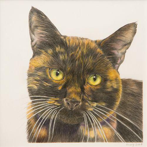Schildpad-kat, getekend met #polychromos kleurpotloden op tekenpapier.  18 x 18 cm