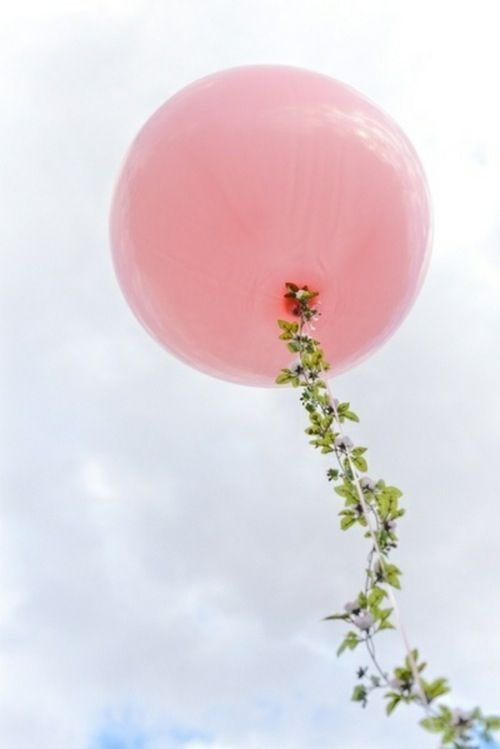 blossom and balloons