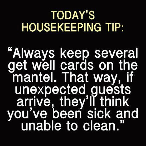 House cleaning tip of the day too funny pinterest for Funny tip of the day quotes
