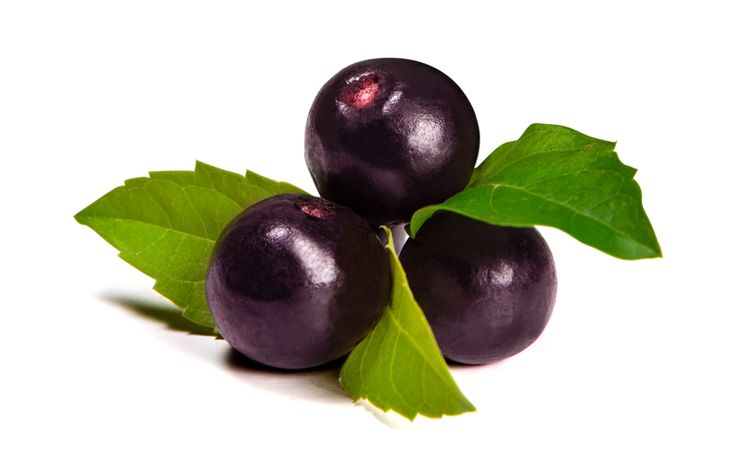 """Reserve ingredients: Açai Berry - Sporting a deep purple color and claiming to be the richest source of antioxidants of all known fruits, the """"crown jewel"""" of Brazil has been revered by the people of the Amazon for its unique nutritional properties."""