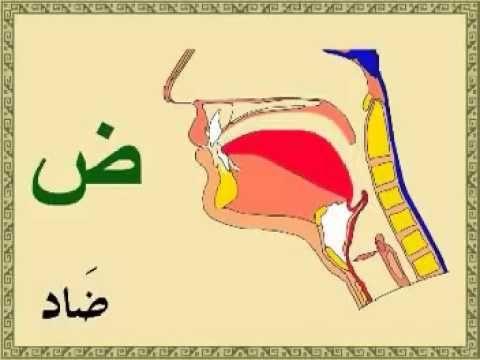 25 Best Arabic Alphabet Videos Images On Pinterest
