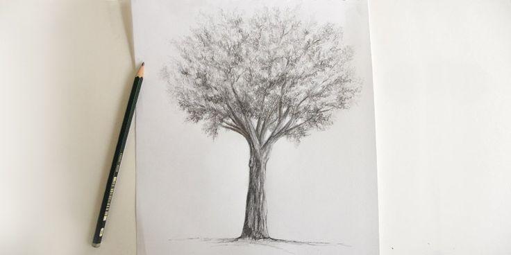 Voici un tutoriel très utile pour tous ceux qui aiment dessiner des paysages. Nous allons dessiner un arbre au crayon en nous intéressant d'abord à la forme globale, puis aux détails les plus fins. Quand la technique de dessin suit la nature Voyons d'abord comment se construit un arbre dans ...