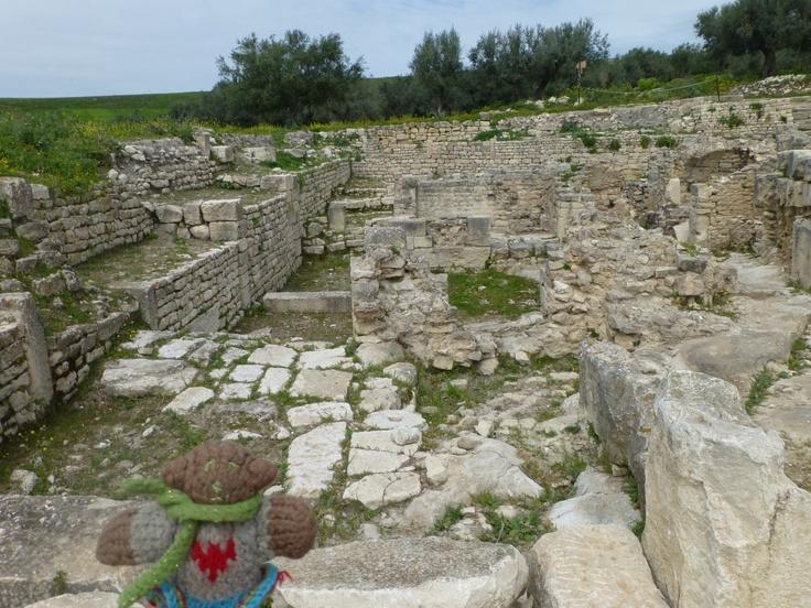 Mini Bear among the massive and impressive Roman ruins at Dougga, Tunisia in April, 2013.