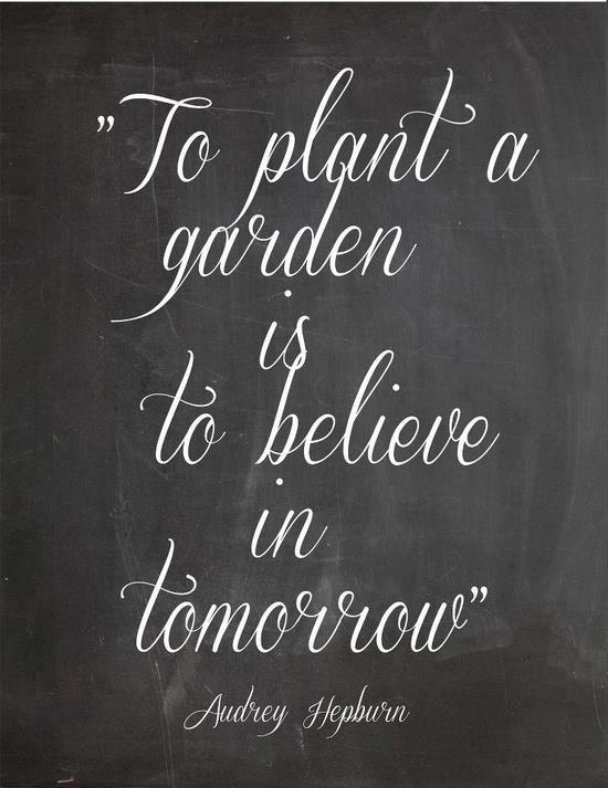 To plant a garden is to believe in tomorrow. 25  best ideas about Garden Poems on Pinterest   Your beautiful