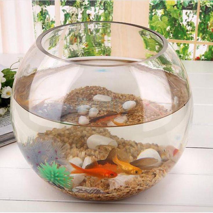Best 25 vase fish tank ideas on pinterest betta fish for Vase aquarium rond