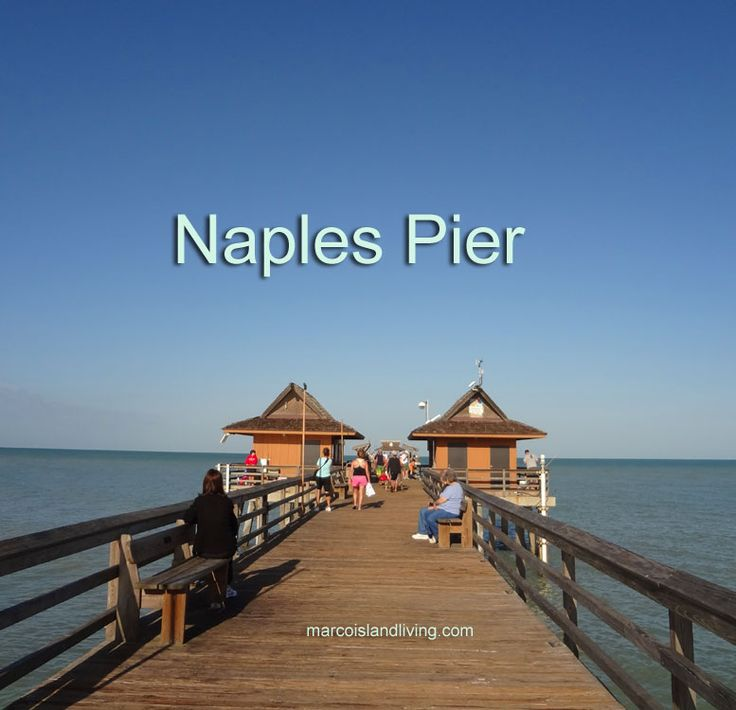 Vacations In Naples Fl: 134 Best Naples, Florida Attractions Images On Pinterest