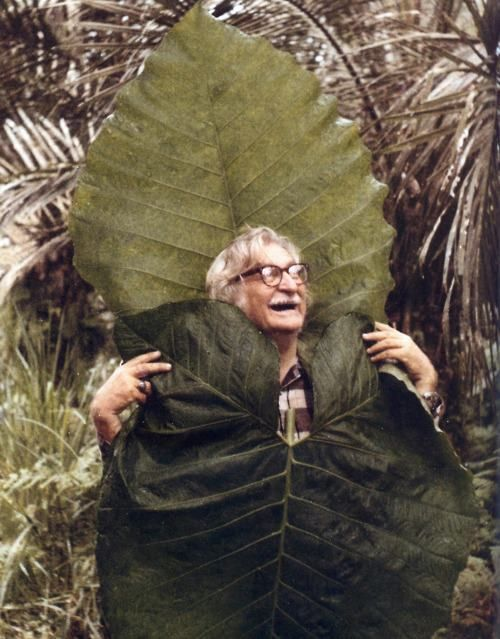Roberto Burle Marx--I guess sometimes you get lucky and find something larger than a fig leaf  !!!!!!!!!!!!!!!