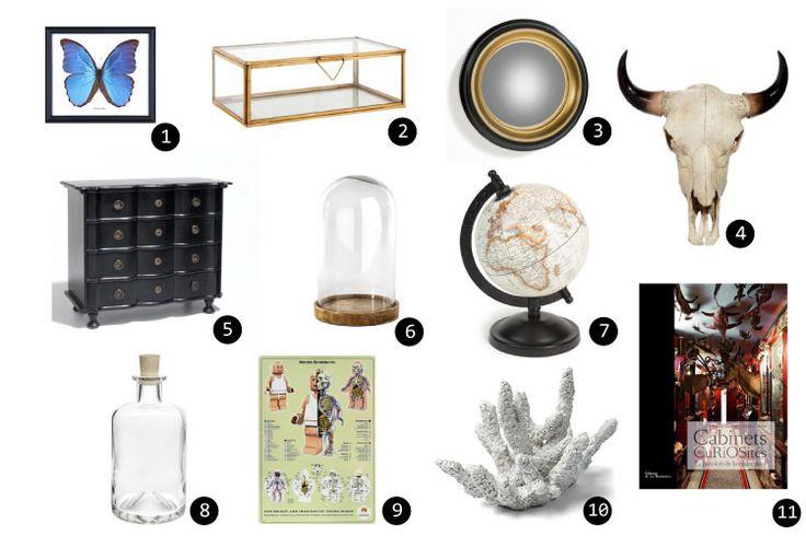 Les 25 meilleures id es de la cat gorie cabinet de curiosit s sur pinterest - Cabinet de curiosite forum ...