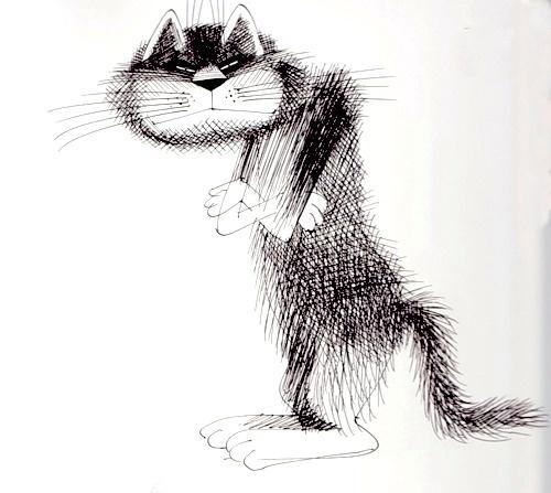 Открытки, картинки кошек карандашом смешные