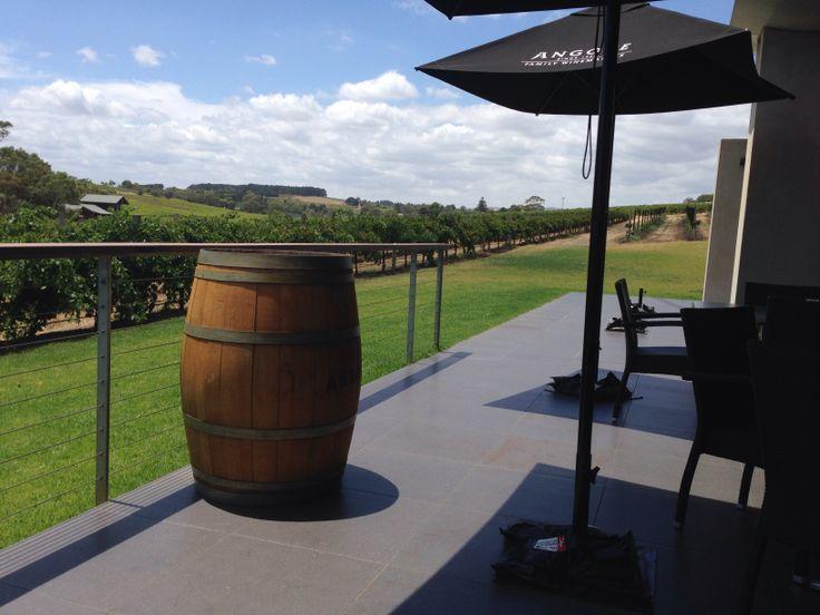 Angove Winery McLaren Vale South Australia
