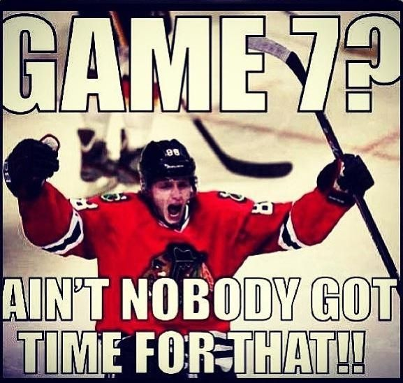 Chicago Blackhawks Stanley Cup Champs 2013