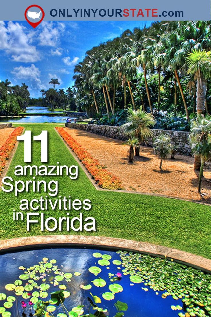 23 best Things to do in Indian Rocks Beach Florida images on ...
