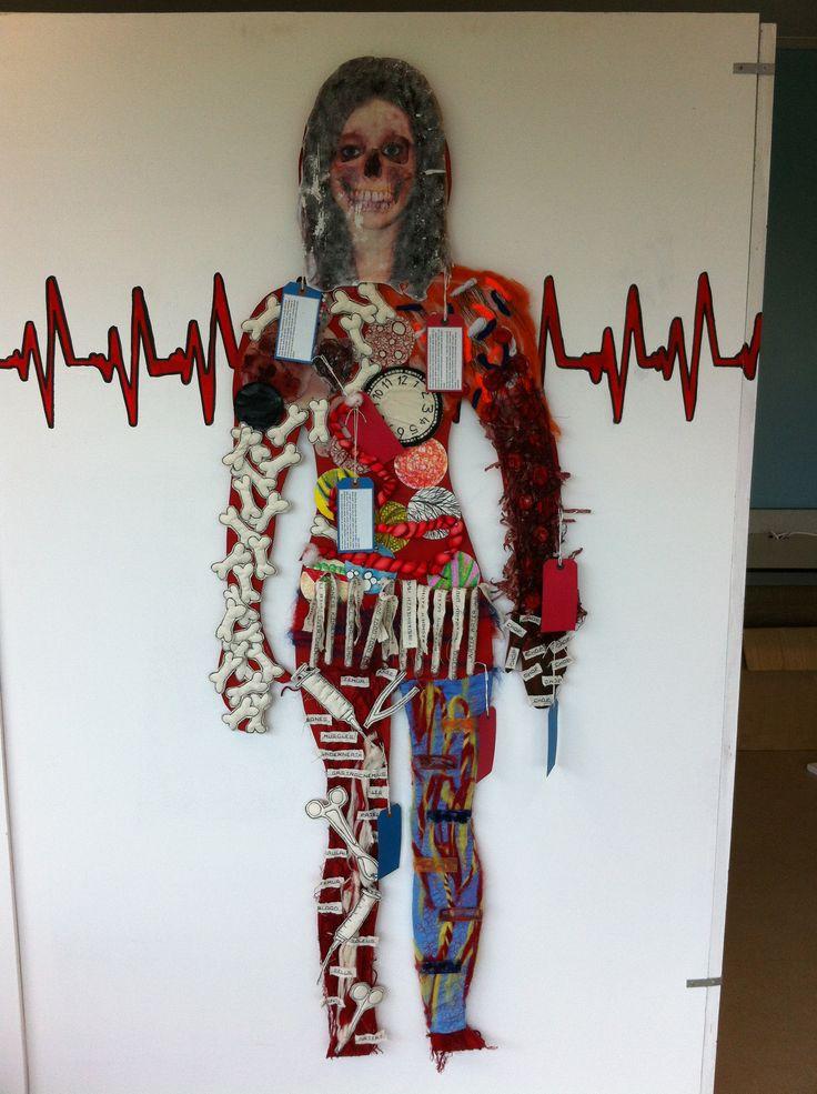 Human body torso - hung from wall