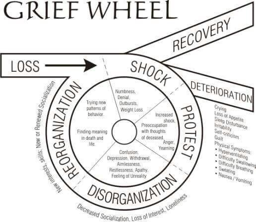 essays management grief The management of grief by bharati mukherjee 3t3 ongcal, rory oracion, hannah pantoni, guinelle porciuncula, myka quitilen, stephanie villarta.