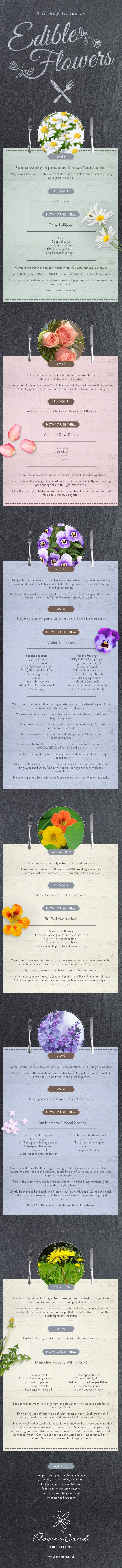 A Handy Guide to Edible Flowers #Infographic #Food #Flower