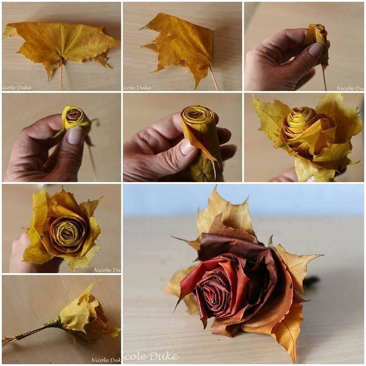 I found this easy DIY fall leaf rose on Facebook but the person who posted it was not the girl who created it, Nicole Duke. I did a Google search for Nicole Duk