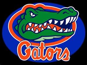 Florida GatorsUniverse Of Florida, Sports Team, Gator Fans, Florida Gators, Gator Girls, Gator Football, Gator Stuff, Gator Logo, Gator National