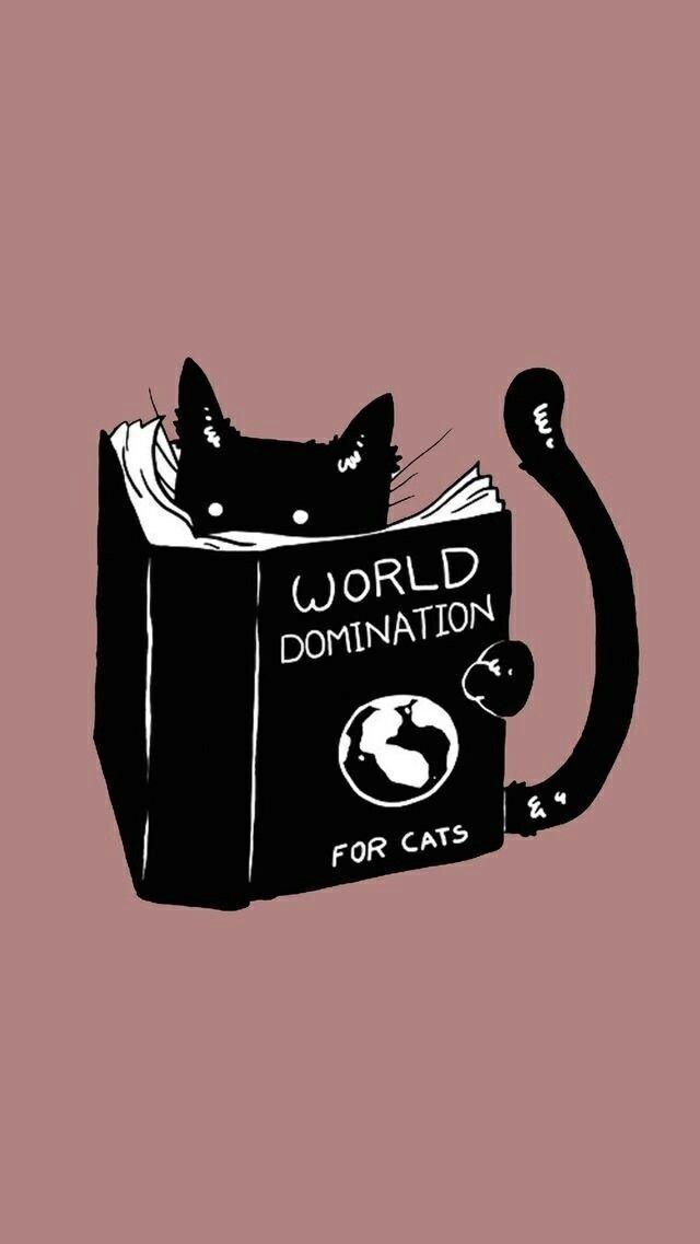 Katzen, Weltherrschaft, schwarze Katze, Miau, Kätzchen, Schnurren, Schnurren   – Katzen | Cats – #cats #Kätzchen #Katze #Katzen #Miau