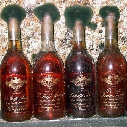 Tokaji aszú bor/Tokaji wine