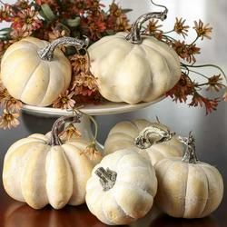 Assorted white pumpkins (pack of 6) $15.99 Factory Craft Direct