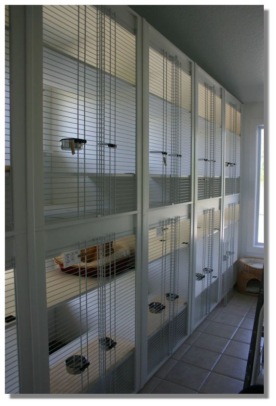 65 Best Images About Boarding Kennels On Pinterest Metal