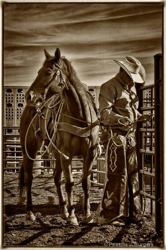 """The Reluctant Cowboy""  http://www.amazon.com/Reluctant-Cowboy-Elizabeth-Garcia-ebook/dp/B00IU6LTGK/ref=sr_1_1?s=booksie=UTF8qid=1398455503sr=1-1keywords=the+reluctant+cowboy+by+elizabeth+garcia"