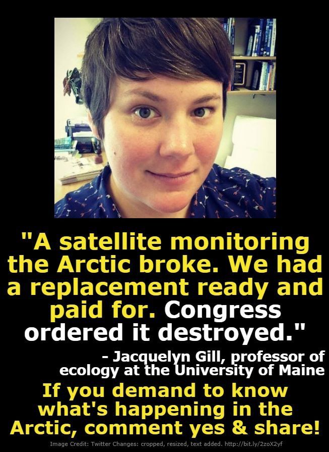 Yes!  -if we don't know what's going on at the Arctic than climate change will be that much easier to deny...