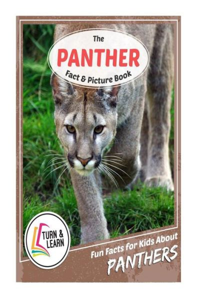 The Panther Fact and Picture Book: Fun Facts for Kids About Panthers