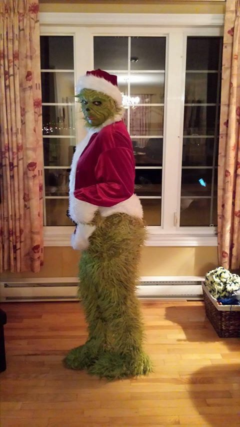 The grinch that stole Christmas  Halloween costume homemade diy