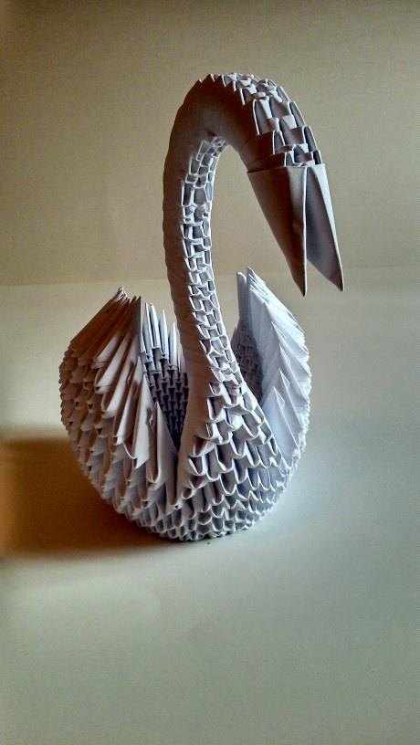 Cisne... regalos especiales