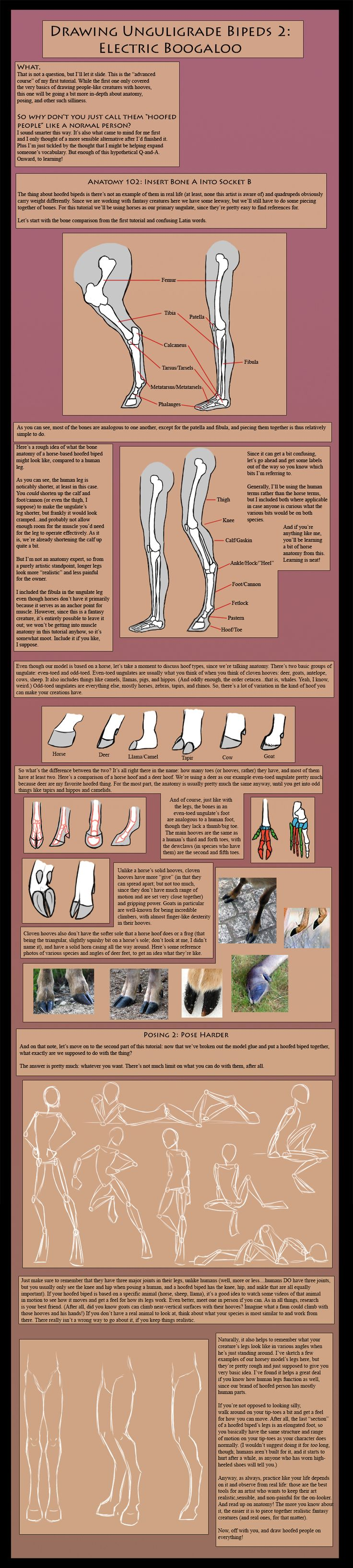 How To Draw Unguligrade Bipeds: Advanced Course By  The13thblackcatiantart On @