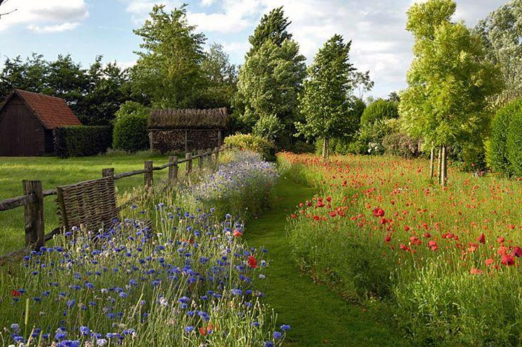 Jürgen Becker   Focus on garden - Fine Photography