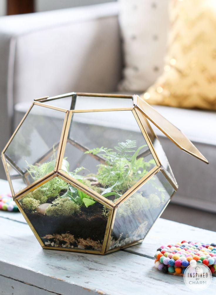 Idée Déco : Une fougère dans un terrarium pour végétaliser son salon