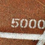 Entrenamiento para carreras de 5 kilómetros (5000 metros)  8 tandas de 500km y pausa de 2min