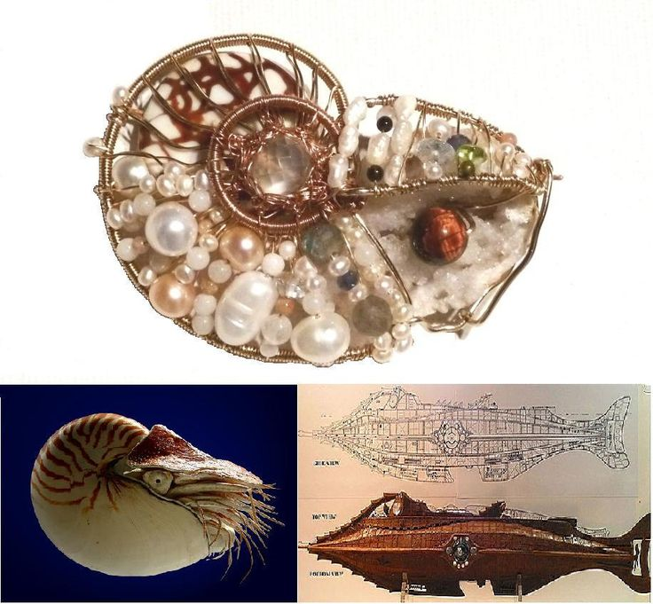 Nautilus brooch, winner at a local jewelry competition, absolute OOAK artistic jewelry