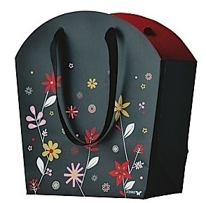 8 best Unique Gift Bags images on Pinterest | Gift bags, Auction ...