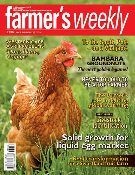 13 December 2013 - 'Solid growth for liquid egg market'