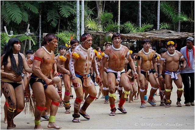 Armario De Parede Cozinha ~ 1000+ images about Brazilian Natives on Pinterest Artesanato, Jaguar and Indian