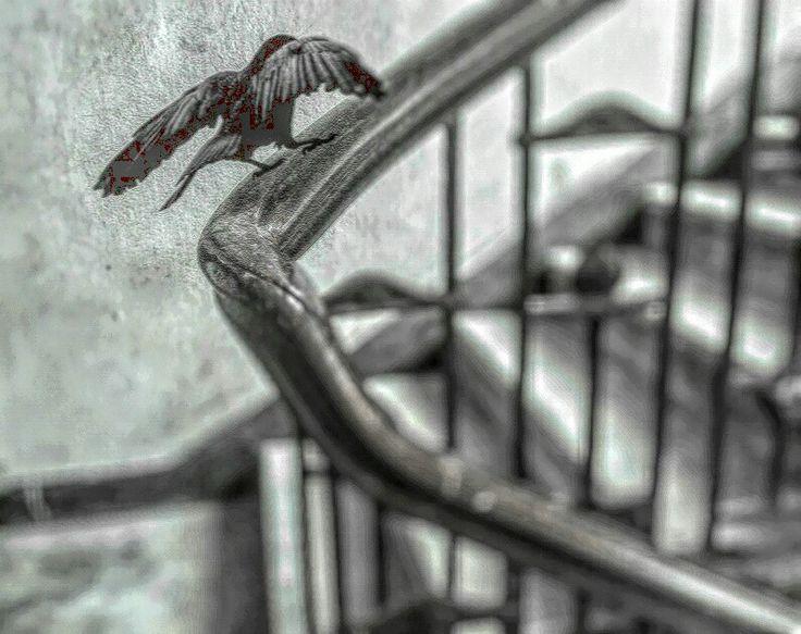 Khozem parmar art photography