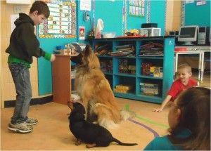 Des chiens viennent en aide aux élèves en difficulté -  La thérapie assistée ou facilitée par [...] #zootherapie #education #chien http://rire.ctreq.qc.ca/2013/04/des-chiens-viennent-en-aide-aux-eleves-en-difficulte/