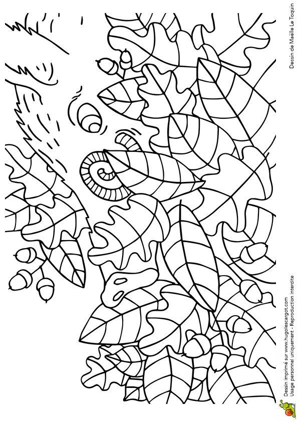 Coloriage cache cache feuilles sanglier sur Hugolescargot.com - Hugolescargot.com