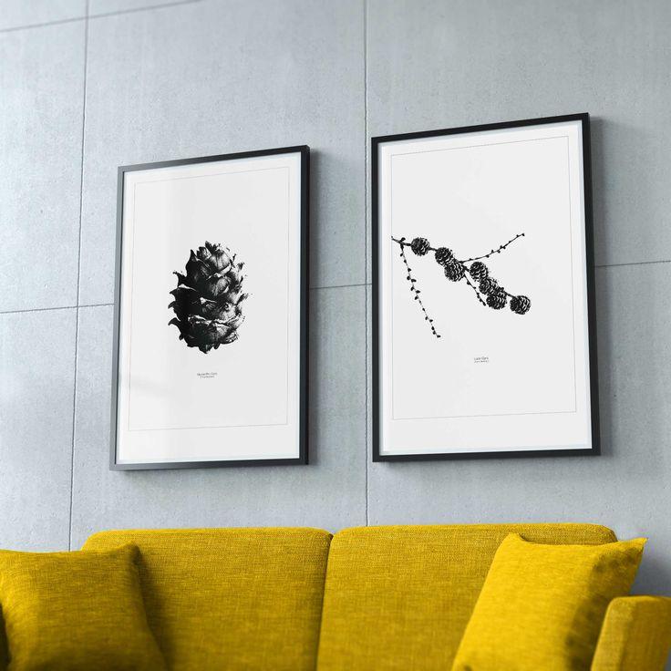 "UMBER ArtPosters.  Left: ""Siberian Pine Cone"" - Right: ""Larch Cones"" - 50 x 70 cm . #illustration #artwork #umber #kongle #pinecone #larch #brance #nature #forest #madeinnorway #macro #artposters #posterdesign #designinspiration #interiordesign #interior #wallart  #rawumber #nordicdesign #scandinaviandesign #scandinavianhomes  #scandinaviandecor #vakrehjemoginterior #vakrehjemoginteriør #livingroomdecor #stylizedart #minimalism #norwegianmade #norwegian"